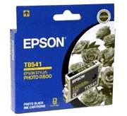 Epson T0541 Photo Black for Epson R800